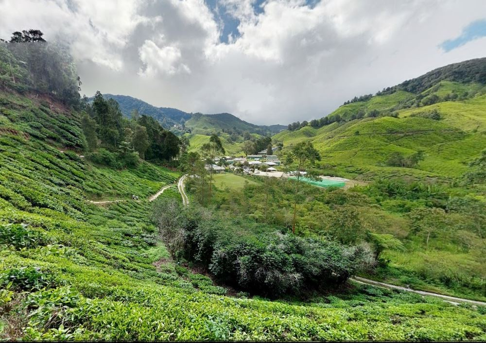Decisions made on the development of the hill station of Cameron Highlands from 1884 till present day